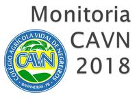 Estabelece normas gerais para o Processo Seletivo de discentes dos Cursos Técnicos para o Programa de Monitoria do CAVN 2018